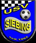 USV RB Schönwetter Bau Siebing